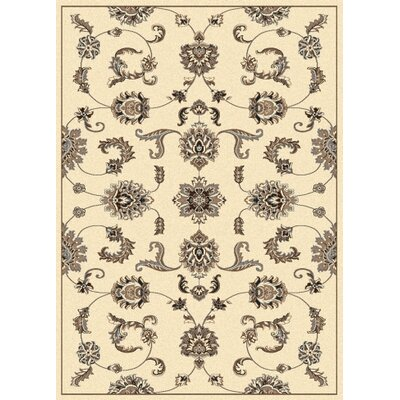 Windsor Ivory Area Rug Rug Size: Rectangle 55 x 77
