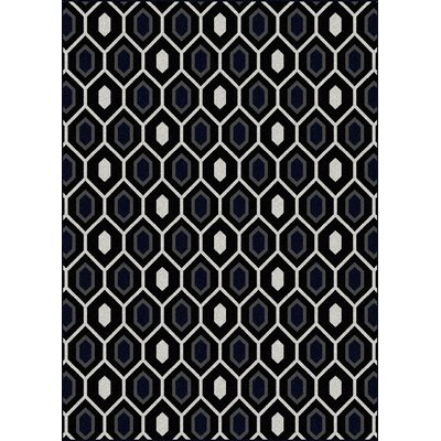 Hampton Black/Grey Area Rug Rug Size: 55 x 77