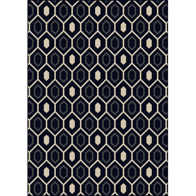 Hampton Black/Cream Area Rug Rug Size: Runner 22 x 77