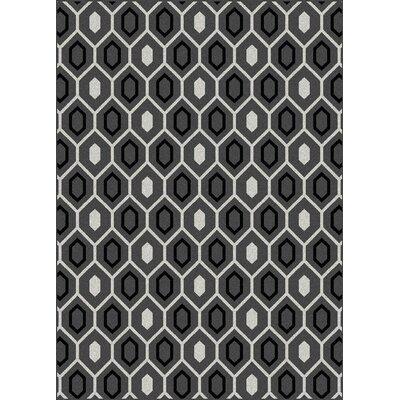 Hampton Grey Area Rug Rug Size: 55 x 77