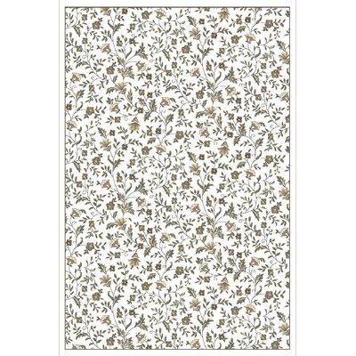 Ackermanville Bone Area Rug Rug Size: 710 x 106