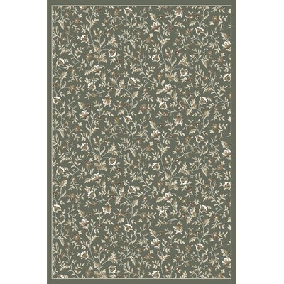 Ackermanville Green Area Rug Rug Size: Rectangle 53 x 73