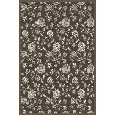Ackermanville Brown Area Rug Rug Size: Rectangle 53 x 73