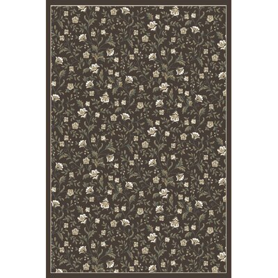 Ackermanville Brown Area Rug Rug Size: 710 x 106