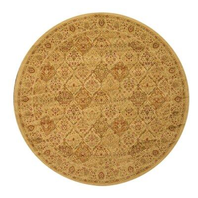 Pomfret Gold Area Rug Rug Size: Round 53