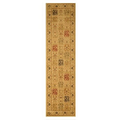 Madison Brown Area Rug Rug Size: Runner 27 x 91