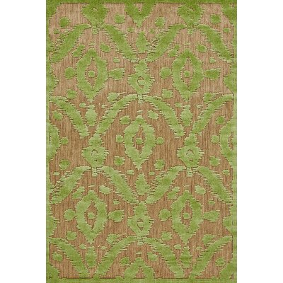 Monroe Green Indoor/Outdoor Area Rug Rug Size: Rectangle 76 x 106