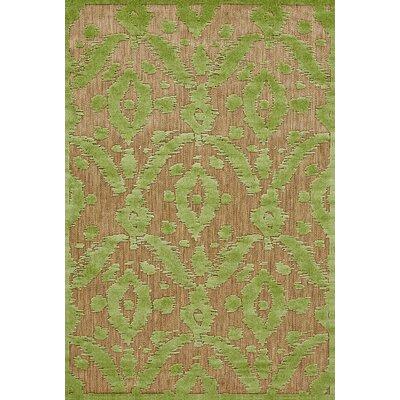 Monroe Green Indoor/Outdoor Area Rug Rug Size: 76 x 106
