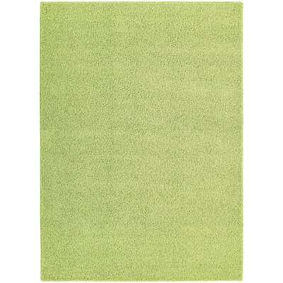 Latimer Green Area Rug Rug Size: 5 x 8