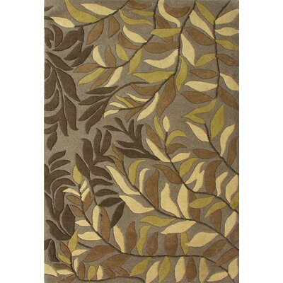 Winston Hand-Woven Green Area Rug Rug Size: 5 x 8