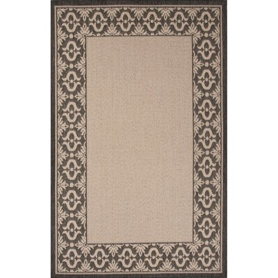Middlefield Hand-Hooked Ivory/Black Indoor/Outdoor Area Rug Rug Size: 53 x 76