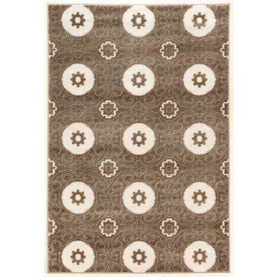 Lucinda Dark Brown Area Rug Rug Size: 5 x 7