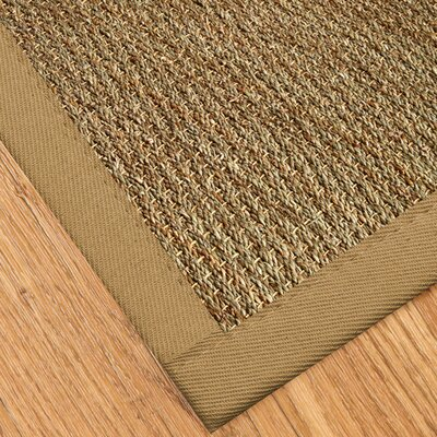 Alland Hand-Woven Khaki Area Rug Rug Size: Rectangle 4 x 6