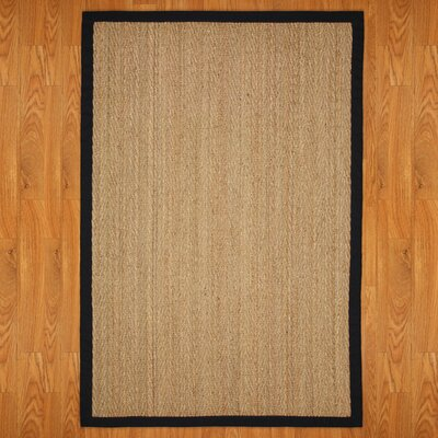 Alland Hand-Woven Brown Area Rug Rug Size: Rectangle 4 x 6