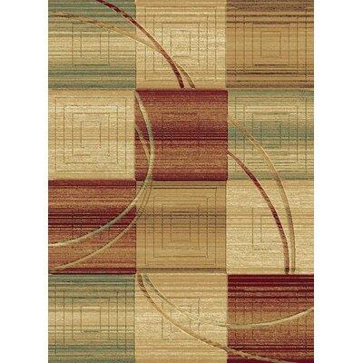 Sanderson Multi Area Rug Rug Size: Runner 23 x 77