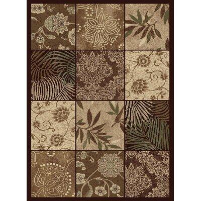 Crawford Brown/Tan Area Rug Rug Size: 5 x 76