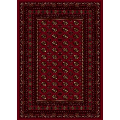 Dexter Red Area Rug Rug Size: 53 x 77