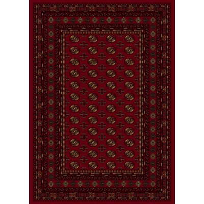 Dexter Red Area Rug Rug Size: Runner 23 x 77