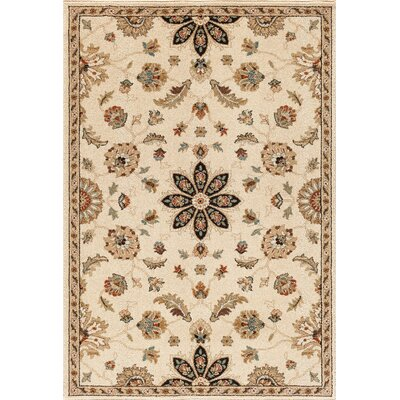 Hadfield Bone Area Rug Rug Size: 5 x 76
