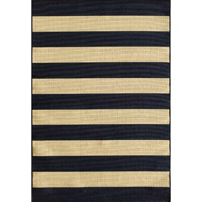Lindsay Navy Indoor/Outdoor Area Rug Rug Size: 67 x 96