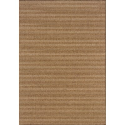 South Hampton Tan Indoor/Outdoor Area Rug Rug Size: Rectangle 2'5