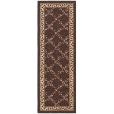 Ryan Chocolate Indoor/Outdoor Area Rug Rug Size: 18 x 411