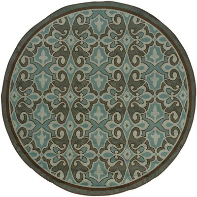 Newfield Aqua Blue/Brown Indoor/Outdoor Area Rug Rug Size: Round 710