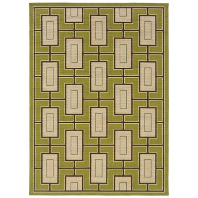 Newfield Green/Ivory Indoor/Outdoor Area Rug Rug Size: Rectangle 67 x 96