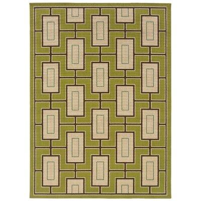 Newfield Green/Ivory Indoor/Outdoor Area Rug Rug Size: 67 x 96