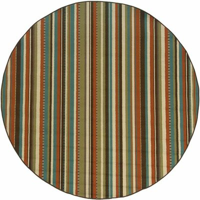Newfield Green/Blue Indoor/Outdoor Area Rug Rug Size: 37 x 56