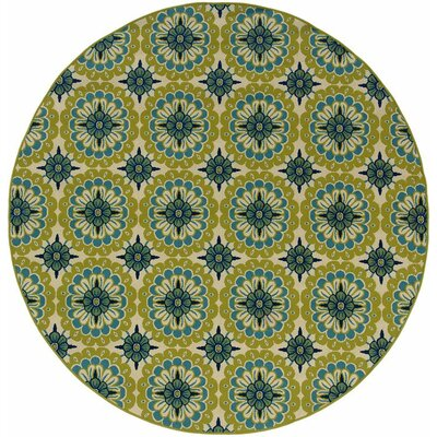 Newfield Green/Ivory Indoor/Outdoor Area Rug Rug Size: 37 x 56