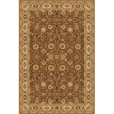 Gloucester Brown Area Rug Rug Size: Round 53