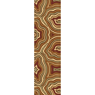 Jordan Brown Area Rug Rug Size: Runner 23 x 710