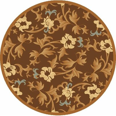 Jordan Brown Area Rug Rug Size: Rectangle 2 x 211