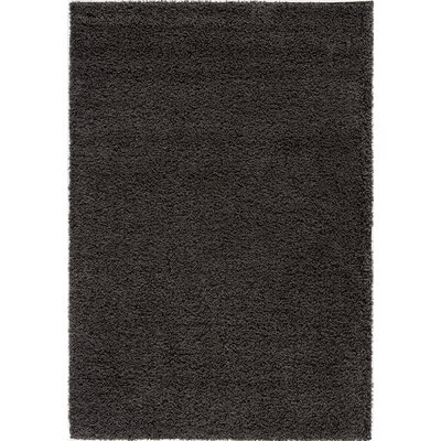 Cambridge Charcoal Area Rug Rug Size: 53 x 76