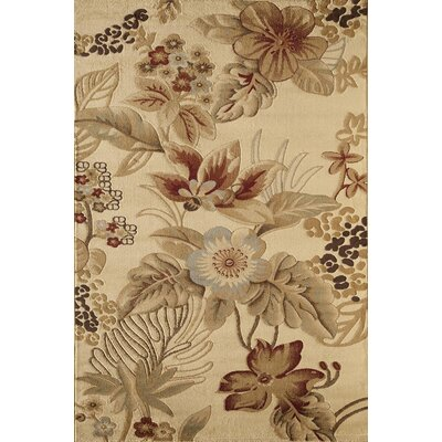 Allston Natural Area Rug Rug Size: Rectangle 53 x 710