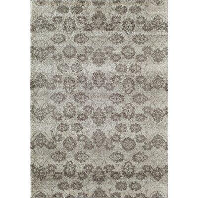 Grady Beige/Ivory Area Rug Rug Size: 53 x 710