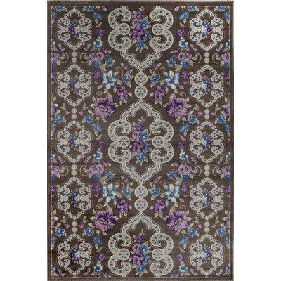 Rosalie Brown/Purple Indoor/Outdoor Area Rug Rug Size: 2 x 3