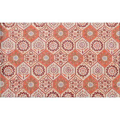 Huntington Hand-Hooked Orange Indoor/Outdoor Area Rug Rug Size: 76 x 96