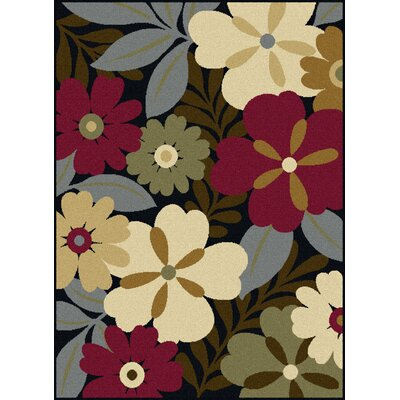 Colesville Brown Area Rug Rug Size: 76 x 910