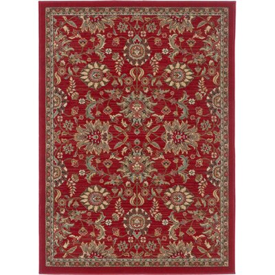 Treadway Red Area Rug Rug Size: Rectangle 5' x 7'