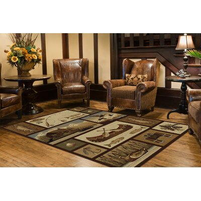 Brody Brown Area Rug Rug Size: Rectangle 8 x 11