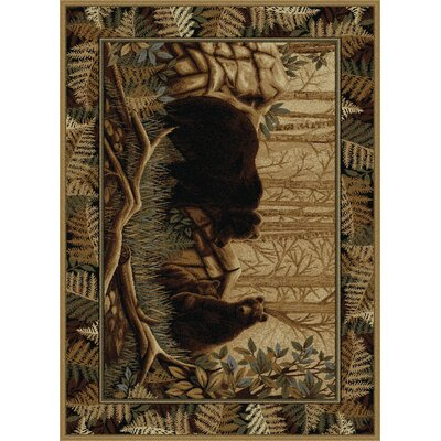Josephine Beige/Brown Area Rug Rug Size: Rectangle 8 x 11