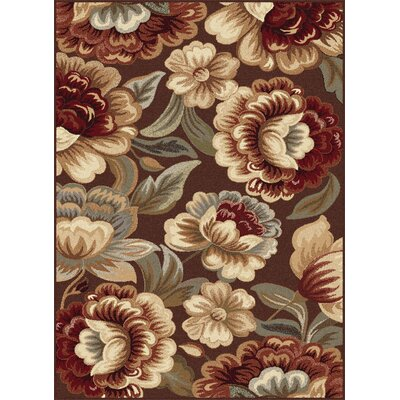 Barbarra Brown Area Rug Rug Size: 710 x 103