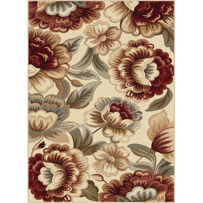 Barbarra Ivory Area Rug Rug Size: Rectangle 53 x 73