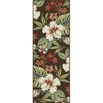 Murphy Brown Area Rug Rug Size: Runner 23 x 77