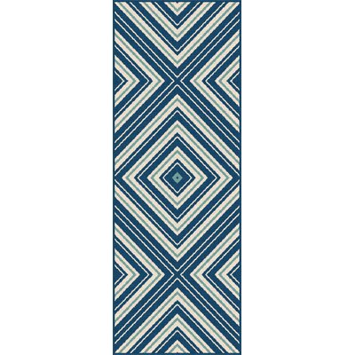 Fairhaven Navy Indoor/Outdoor Area Rug Rug Size: Runner 27 x 73