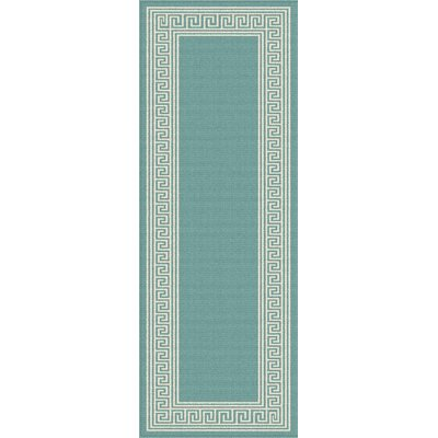 Fairhaven Aqua Indoor/Outdoor Area Rug Rug Size: Runner 27 x 73