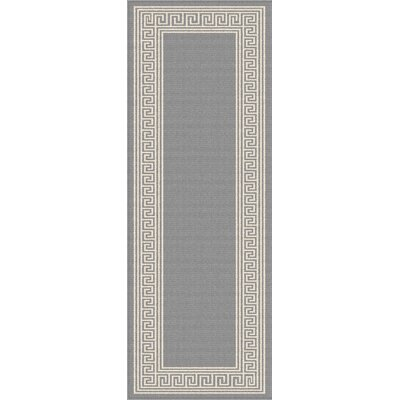 Martinique Gray Indoor/Outdoor Area Rug Rug Size: Runner 27 x 73