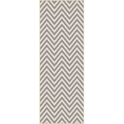 Fairhaven Gray/Cream Indoor/Outdoor Area Rug Rug Size: Runner 27 x 73